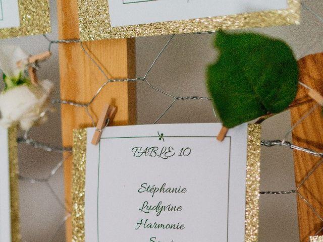 Le mariage de Stevens et Noémie à Fontenay-Trésigny, Seine-et-Marne 29