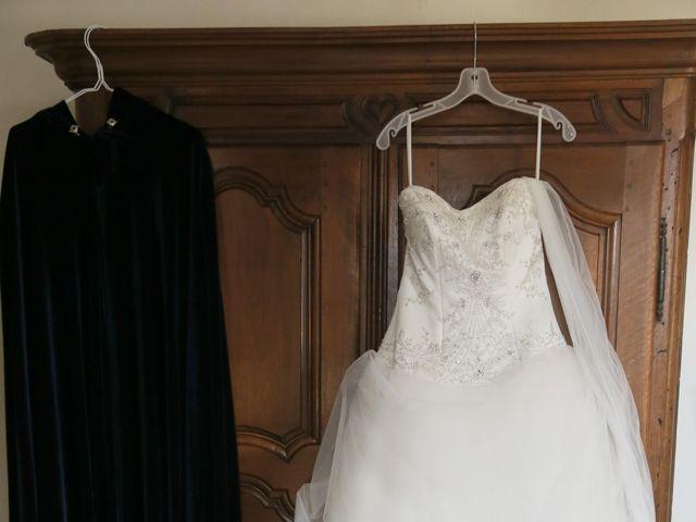 Le mariage de Guillaume et Cécilia à Saint-André-le-Gaz, Isère 17