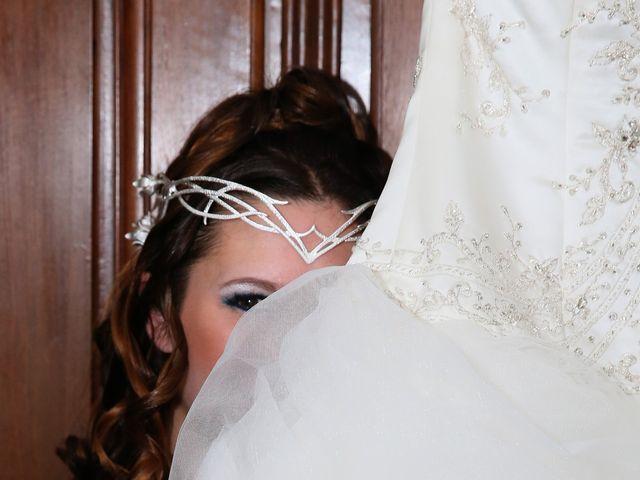 Le mariage de Guillaume et Cécilia à Saint-André-le-Gaz, Isère 19