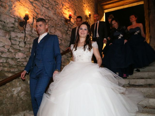Le mariage de Guillaume et Cécilia à Saint-André-le-Gaz, Isère 37
