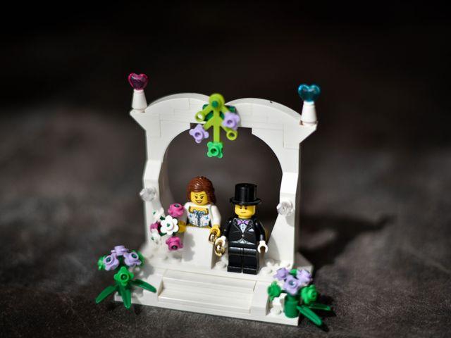 Le mariage de Florent et Clémence à Rochefort-sur-Loire, Maine et Loire 14