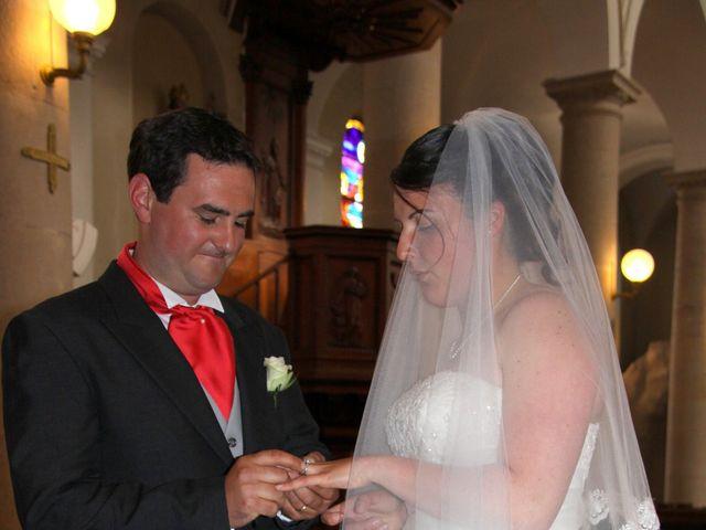 Le mariage de Damien et Lison à Brazey-en-Plaine, Côte d'Or 11