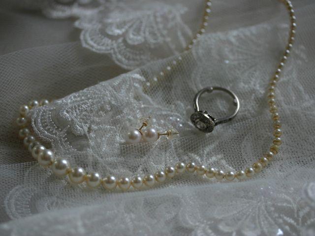 Le mariage de Damien et Lison à Brazey-en-Plaine, Côte d'Or 1