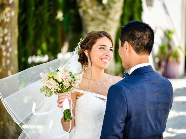 Le mariage de Yoann et Laure à Viviers, Ardèche 13