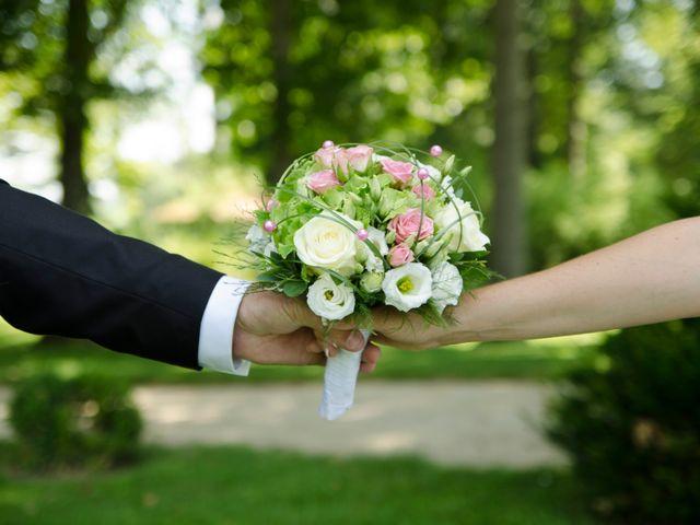 Le mariage de Cédric et Aurore à Gergy, Saône et Loire 10