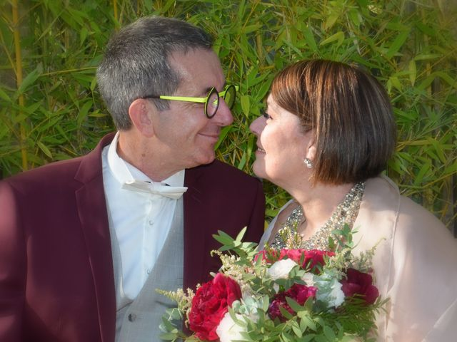 Le mariage de Patrick et Virginie à Auch, Gers 60