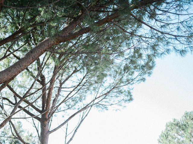 Le mariage de Alex et Laura à Le Castellet, Alpes-de-Haute-Provence 6