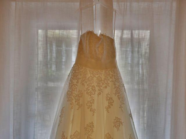 Le mariage de François et Erica à Prunay-en-Yvelines, Yvelines 4