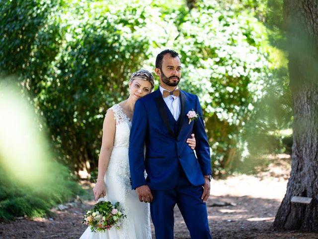 Le mariage de Yohann et Carine à Briare, Loiret 35
