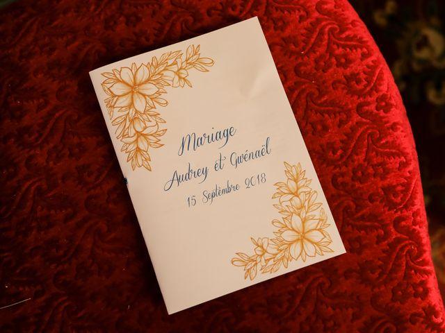 Le mariage de Gwénaël et Audrey à Guer, Morbihan 49
