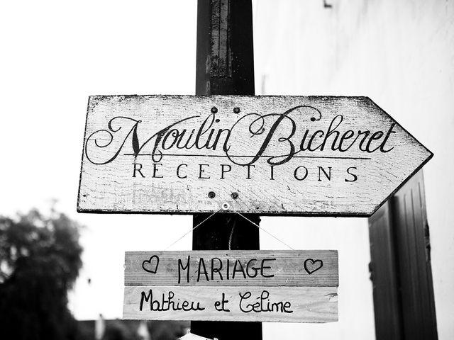 Le mariage de Mathieu et Céline à Saint-Germain-sur-Morin, Seine-et-Marne 1