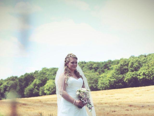 Le mariage de Geoffrey et Syndie à Soisy-sur-École, Essonne 10