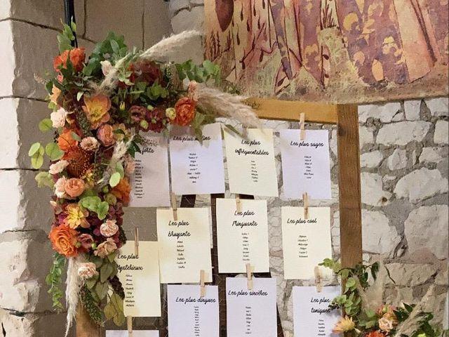 Le mariage de Dinesh  et Pandora  à Lémeré, Indre-et-Loire 4