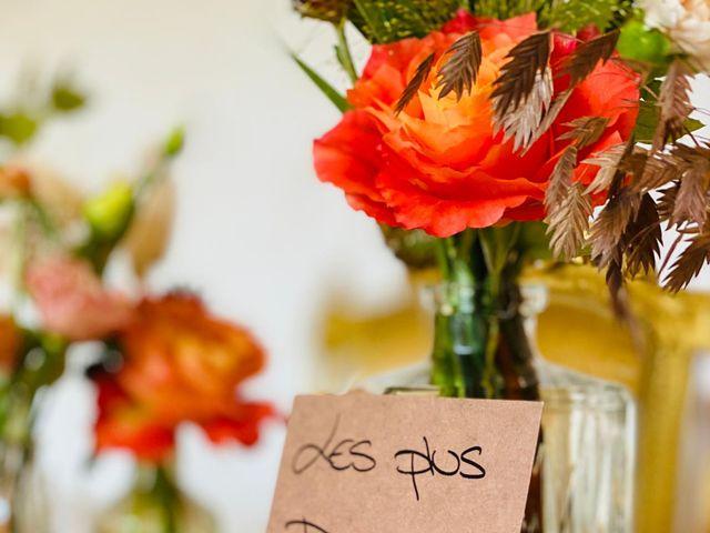 Le mariage de Dinesh  et Pandora  à Lémeré, Indre-et-Loire 7