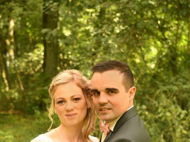 Le mariage de Anthony et Laurie à Chevilly, Loiret 15