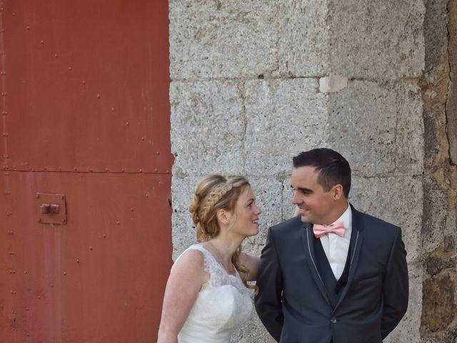 Le mariage de Anthony et Laurie à Chevilly, Loiret 18