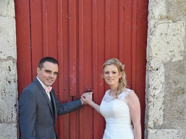 Le mariage de Anthony et Laurie à Chevilly, Loiret 19