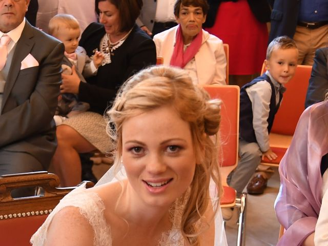 Le mariage de Anthony et Laurie à Chevilly, Loiret 27