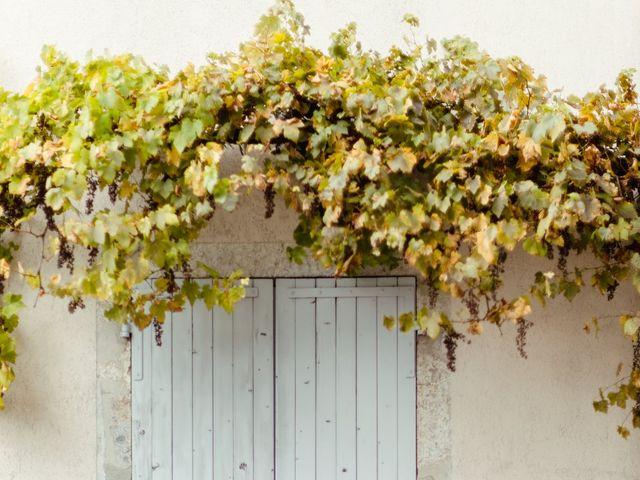 Le mariage de Jean-Christophe et Carine à Chambéry, Savoie 32