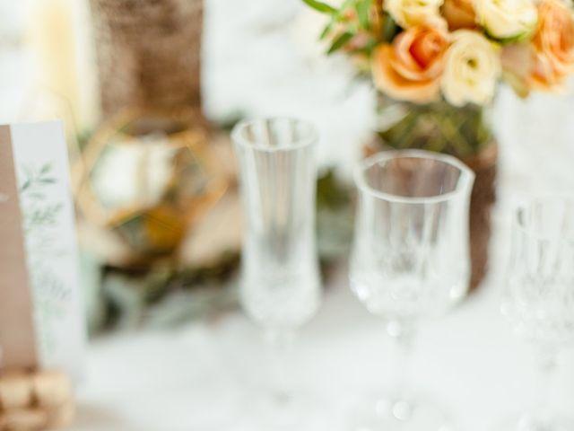 Le mariage de Jean-Christophe et Carine à Chambéry, Savoie 35