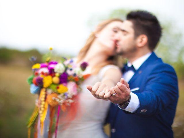 Le mariage de Dominique et Maloup à Calce, Pyrénées-Orientales 38
