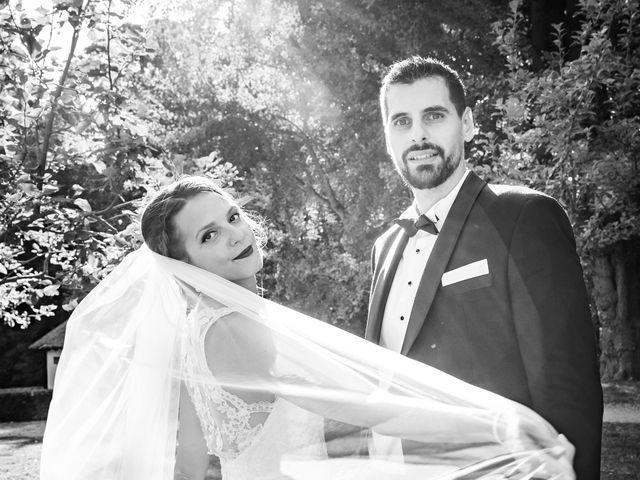 Le mariage de Dalibor et Tamara à Mondreville, Yvelines 8