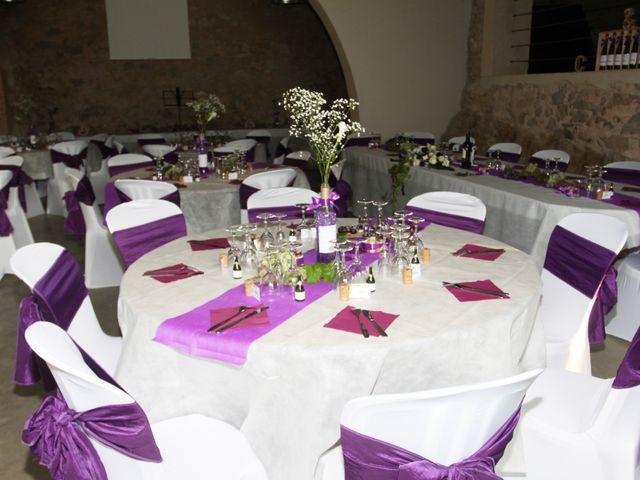 Le mariage de Anthony et Carla à Béziers, Hérault 14
