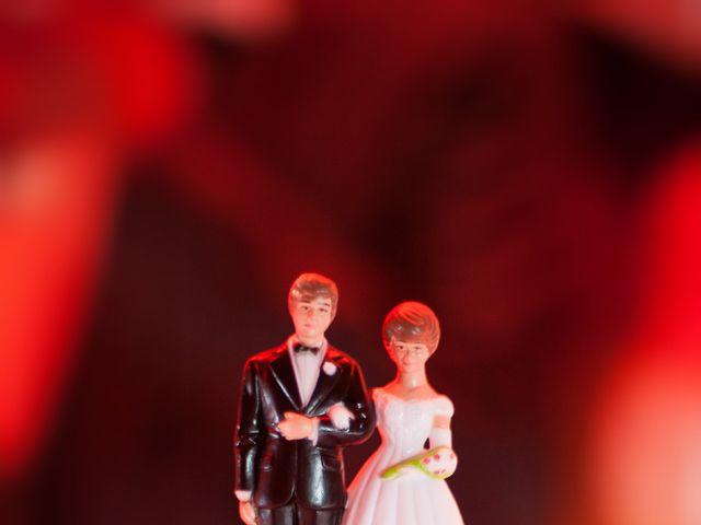 Le mariage de Julien et Emilie à Muret, Haute-Garonne 47