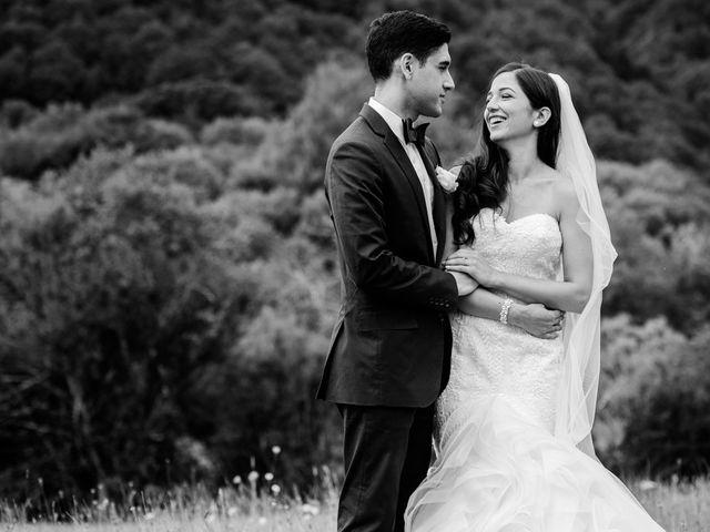 Le mariage de Nima et Mélody à Chambon-sur-Lac, Puy-de-Dôme 15