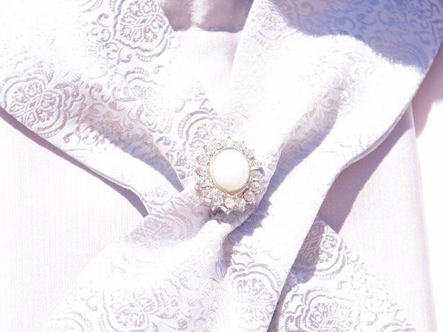 Le mariage de paulo et virginie à Pouillé, Loir-et-Cher 12