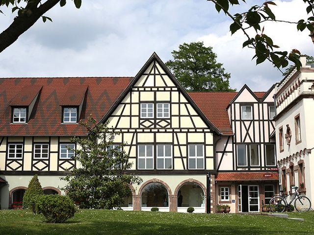 Le mariage de David et Fanny à Strasbourg, Bas Rhin 3