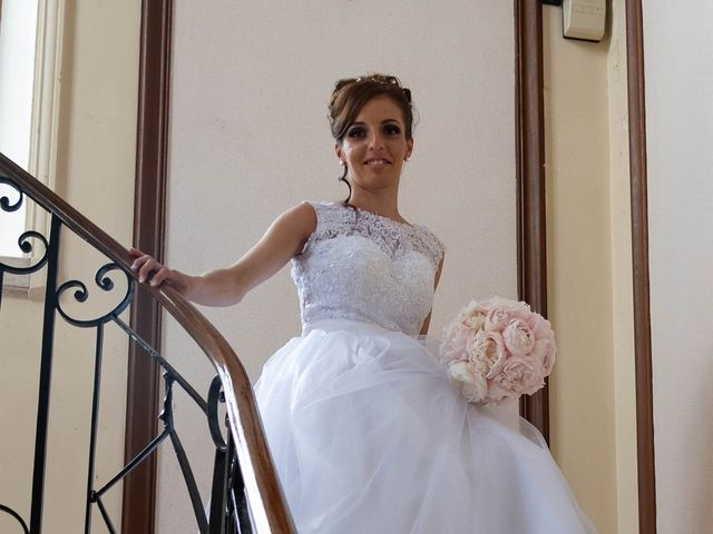 Le mariage de Donovan et Alexia à Nouan-le-Fuzelier, Loir-et-Cher 14