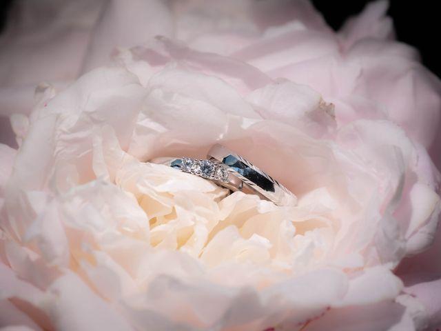 Le mariage de Donovan et Alexia à Nouan-le-Fuzelier, Loir-et-Cher 1