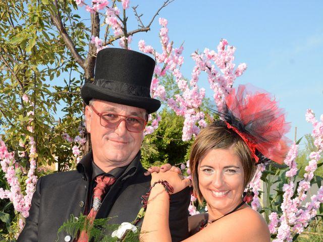 Le mariage de Franck et Laure à Congéniès, Gard 11