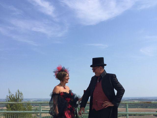 Le mariage de Franck et Laure à Congéniès, Gard 18