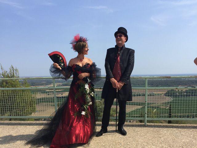 Le mariage de Franck et Laure à Congéniès, Gard 19