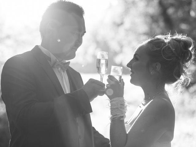 Le mariage de Remy et Sophie à Tullins, Isère 21