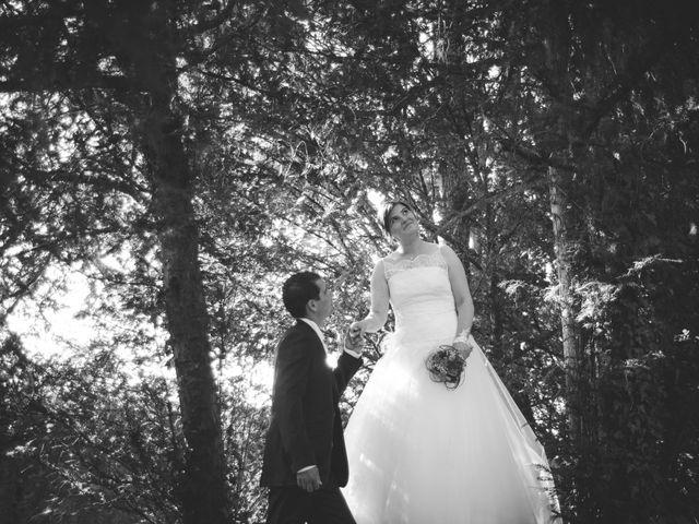 Le mariage de Ludovic et Aurélia à Montpensier, Puy-de-Dôme 13