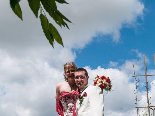 Le mariage de Benoit et Odana à Chamarande, Essonne 7