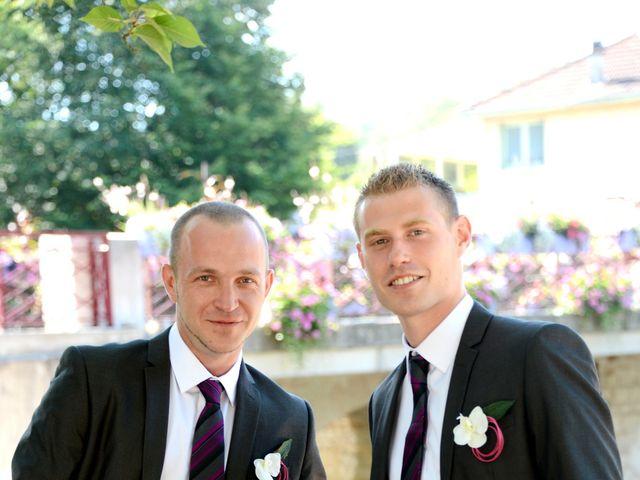 Le mariage de Philippe et Clément à Amareins Francheleins Ces, Ain 4