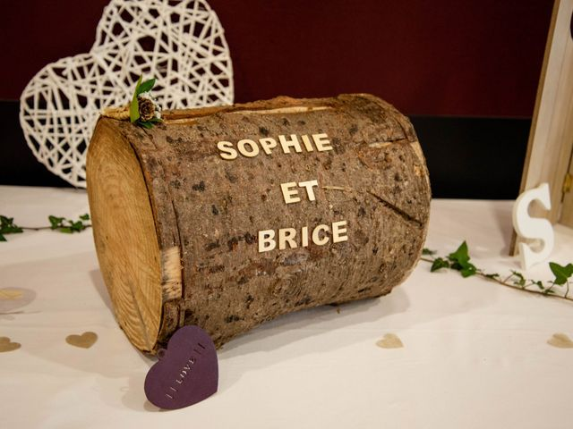 Le mariage de Brice et Sophie à Flers, Orne 35