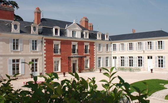 Le mariage de Brice et Audrey à Amboise, Indre-et-Loire 20