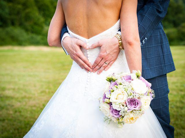 Le mariage de Rich et Anaïs à Nangis, Seine-et-Marne 29