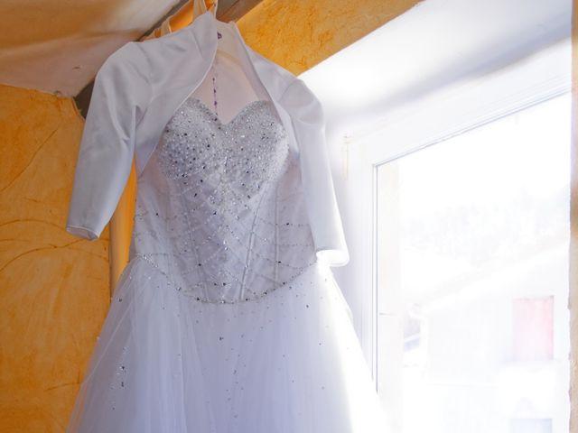 Le mariage de Nicolas et Lola à Alzon, Gard 9