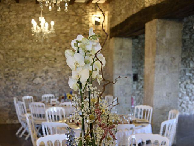 Le mariage de Cédric et Jessica à Ordan-Larroque, Gers 25