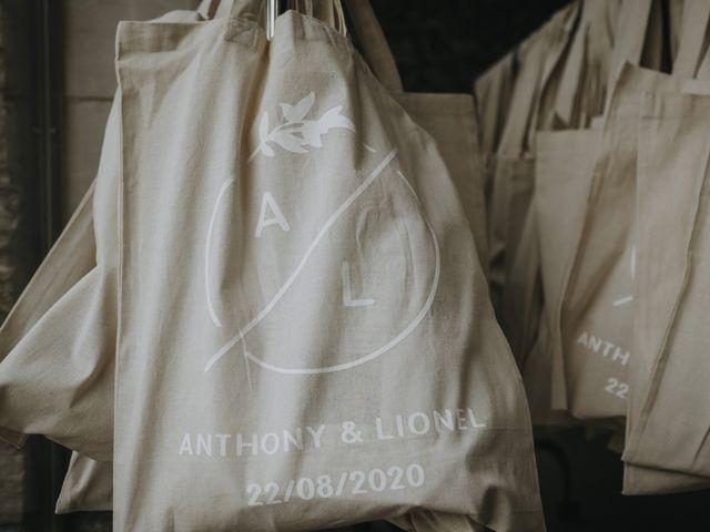 Le mariage de Lionel et Anthony à Nantes, Loire Atlantique 22