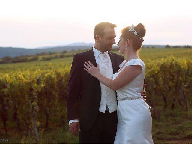 Le mariage de David et Marie-France à Thann, Haut Rhin 10