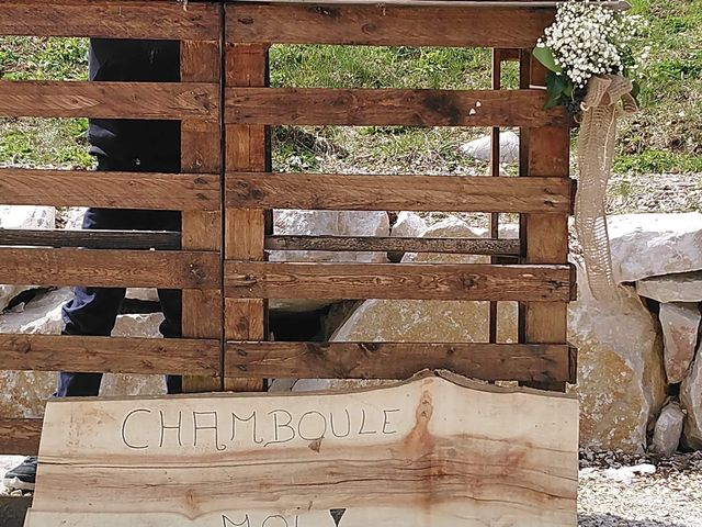 Le mariage de Julie  et Sandra à Vizille, Isère 6