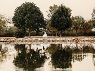 Le mariage de Aurelie et Steeve 3