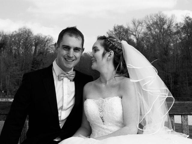 Le mariage de Nicolas et Lisa à Crisenoy, Seine-et-Marne 6